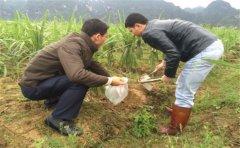 土壤重金属检测仪怎么使用?