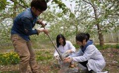 土壤成分分析仪什么牌子好?