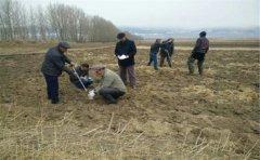 土壤检测设备仪器提高土壤养分丰富性